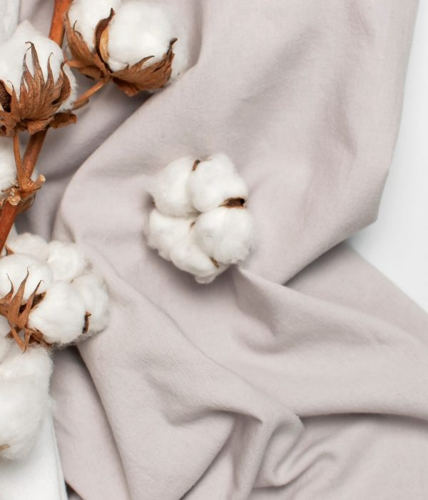 Flat,Lay,Beautiful,Cotton,Branch,,White,And,Gray,Fabric,On